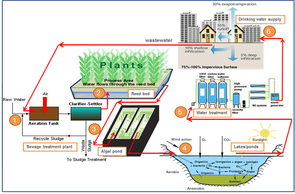 Integrated Wetlands Ecosystem Sustainable Model To Mitigate Water