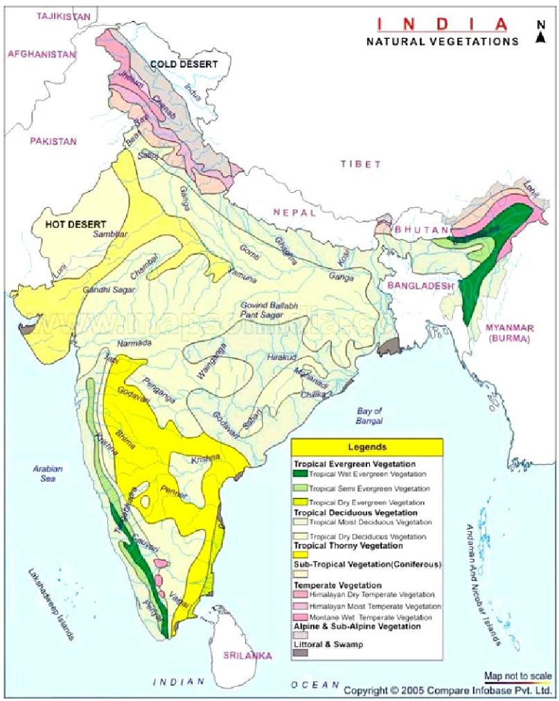 Environmental impact assessment of the national large for Soil zones of india