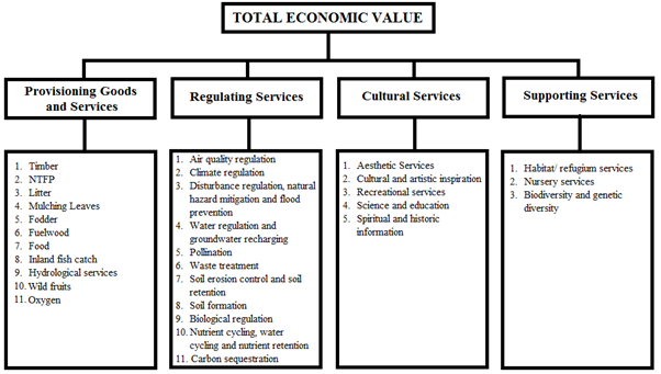 FOREST ECOSYSTEM: GOODS AND SERVICES